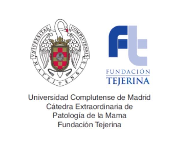 Logo Catedra - Catedras - Fundacion Tejerina
