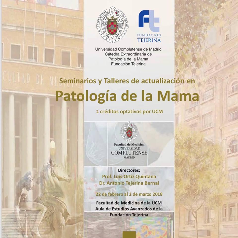 La Fundación Tejerina inicia su ciclo de Seminarios y Talleres de Habilidades en Patología de la Mama